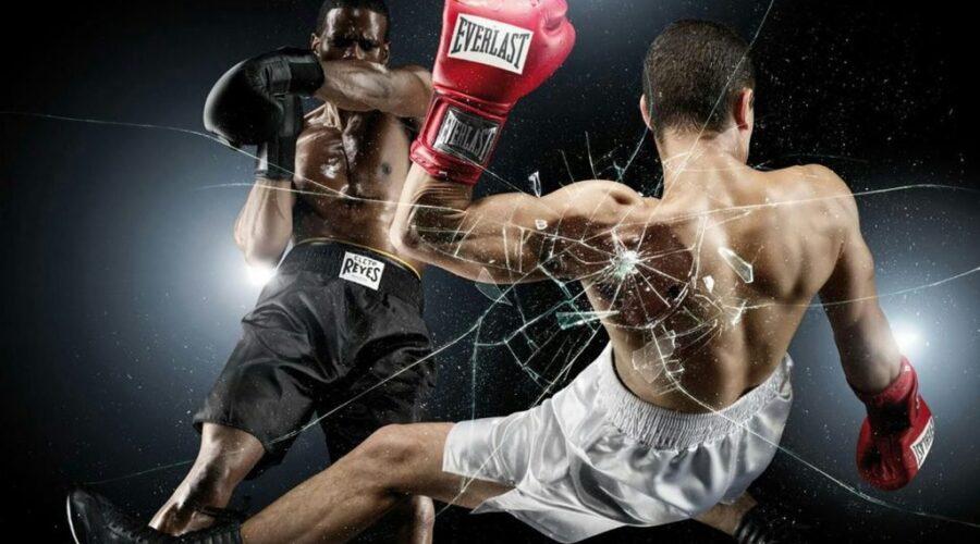 MMA Betting Sites